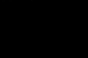 DSC_7396